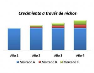 Crecimiento-por-nichos-de-mercado