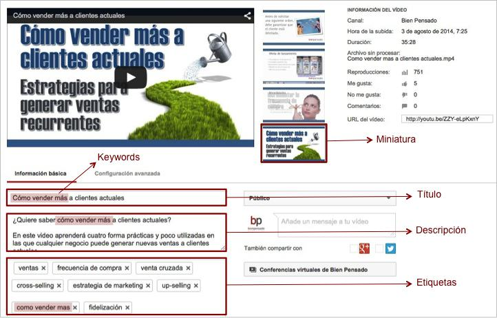 SEO YouTube Metadatos