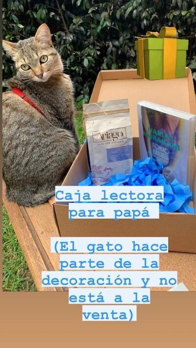 Cajas Lectoras La Libreria de Ana 6