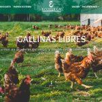 Ecoterra: Cómo diferenciar un huevo