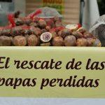 Tesoros Nativos: Al rescate de las papas ancestrales y los tesoros alimentarios perdidos