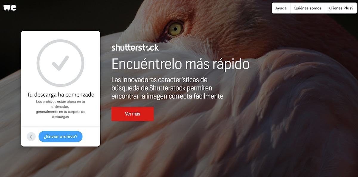 Shutterstock Diferencial velocidad encontrar imagenes