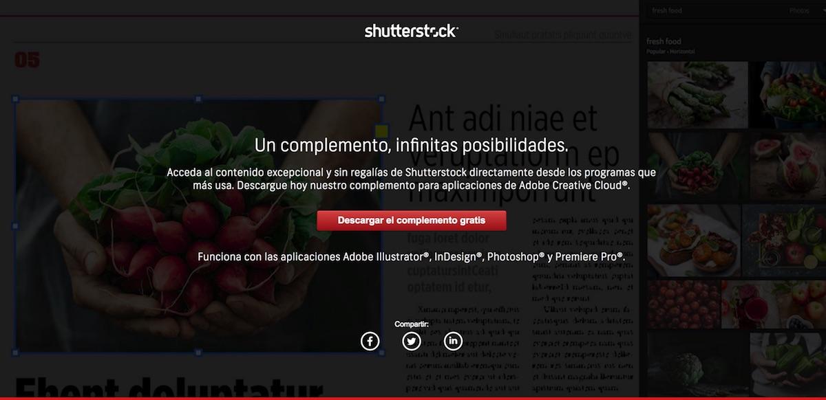 Shutterstock complementos
