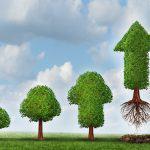 6 maneras de mantener ágil tu startup mientras crece