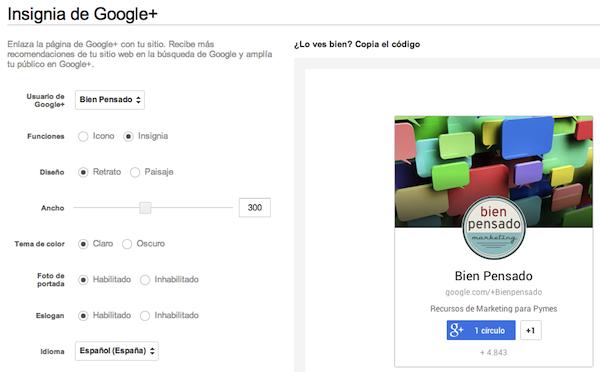 insignia Google en pagina web